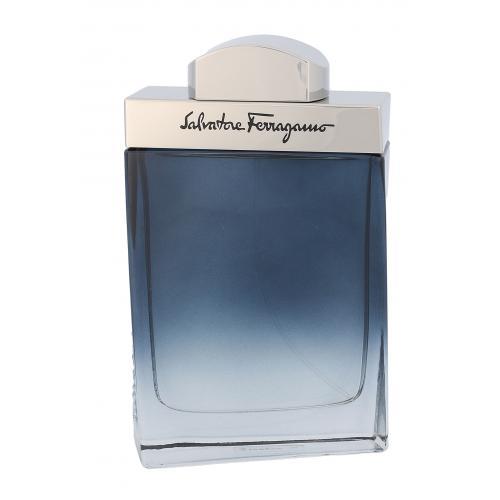Salvatore Ferragamo Subtil Pour Homme 100 ml toaletná voda pre mužov