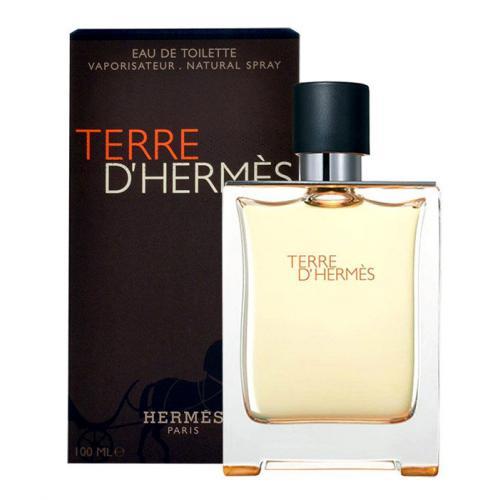 Hermes Terre d´Hermès 50 ml toaletná voda tester pre mužov